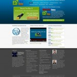 Training companies WordPress website designed to look exciting and fun