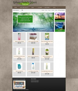 fully featured and functional online store built in WordPress